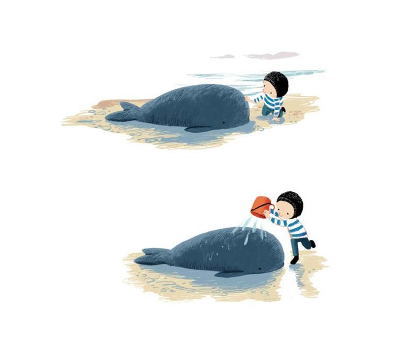 Boek De kleine walvis