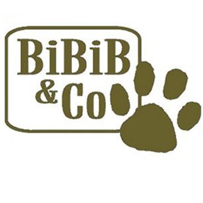 Bibib & Co