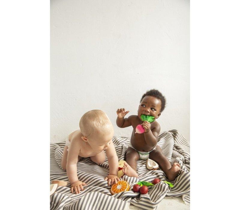 Oli & Carol  bijt- & badspeelgoed radijs
