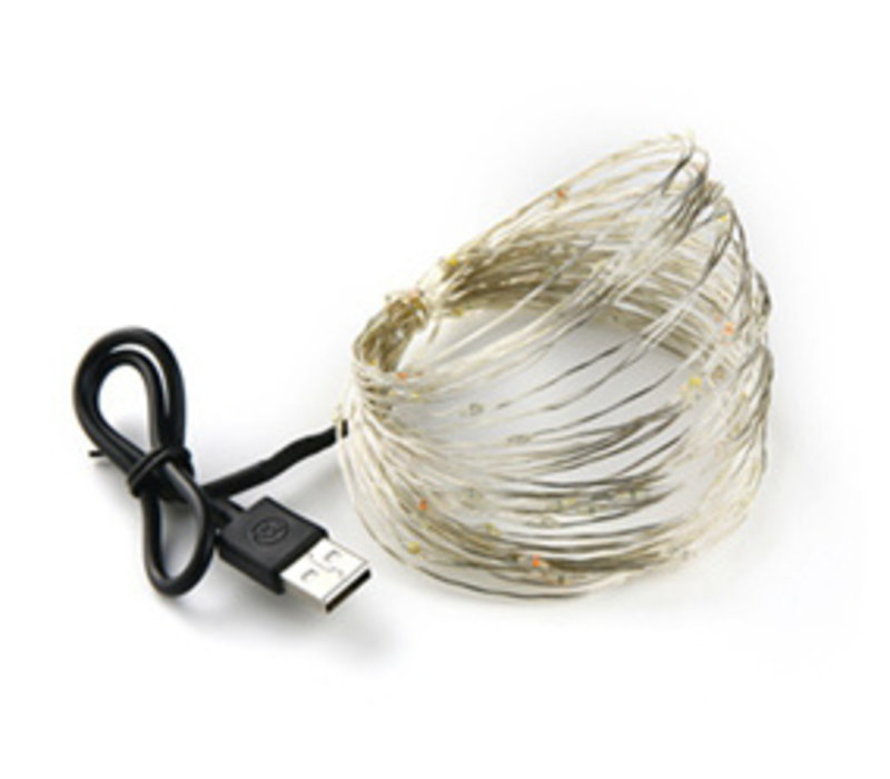 Mrs. Strawberry Silber Lichterkette USB