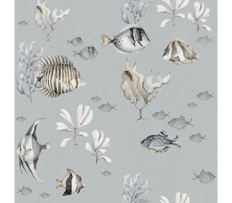 Dekornik wallpaper - Colorful Fish