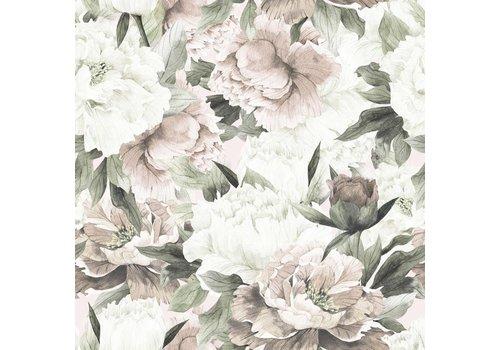 Dekornik Tapete - Weiße und rosa Pfingstrosen