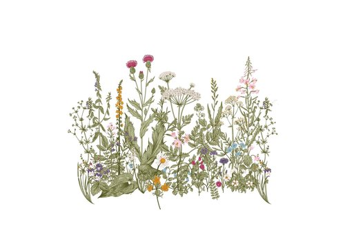 Dekornik Aufkleber - Meadow Color Wallsticker