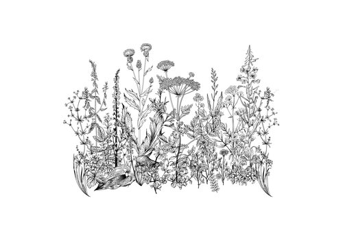 Dekornik sticker - Meadow Black&White