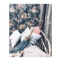 Dekornik behang - Sleepy Animals Dark