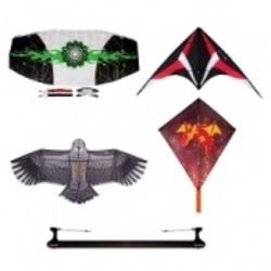 Vliegers en kites