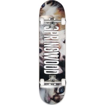 "Springwood Springwood Kittens - complete board white 7.875"""