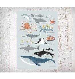 Vierundfünfzig Illustration Meerestiere Poster Din A3