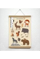 Vierundfünfzig Illustration Waldtiere Poster Din A3