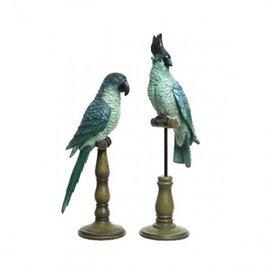 Papegaai Blauw met kuif pot & vaas