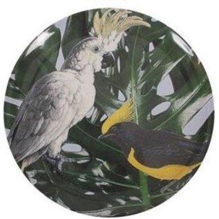 Borden Melamine Jungle