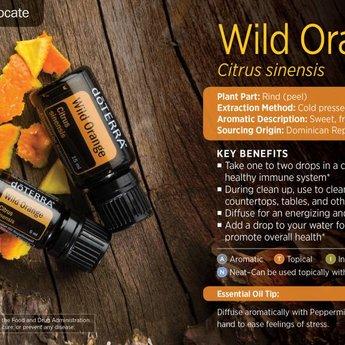 doTERRA Essential Oils Wild Orange Essential Oil - 5 ml.