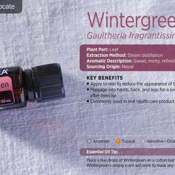 doTERRA Essential Oils Wintergreen Essential Oil