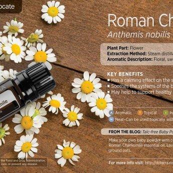 doTERRA Roomse Kamille essentiële olie 5ml.