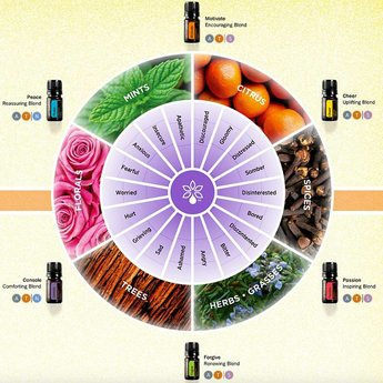 doTERRA Emotional Aromatherapy Touch Kit