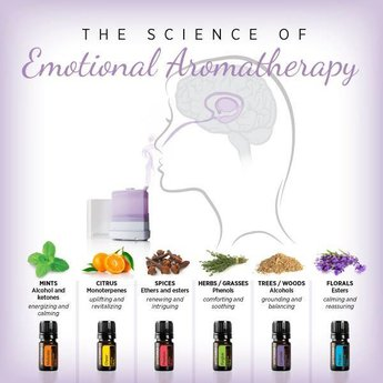 doTERRA Essential Oils Emotional Aromatherapy Touch Kit