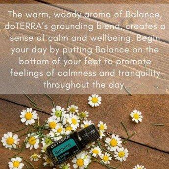 doTERRA Essential Oils Balance Essential Oil - Grounding blend 15 ml.
