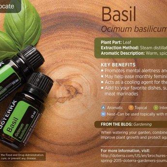 doTERRA Essential Oils Basilicum Essentiële Olie (Basil)