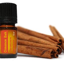 doTERRA Essential Oils Kaneel Essentiële Olie