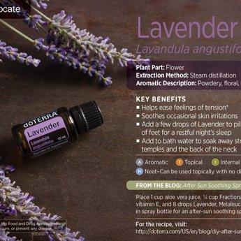 doTERRA Essential Oils Lavendel Essentiële Olie enkelvoudige olie 15 ml.