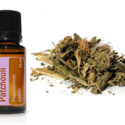 doTERRA Essential Oils Patchouli Essential Oil
