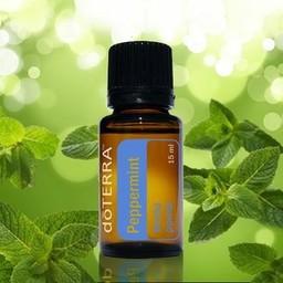 doTERRA Essential Oils Pepermunt Essentiële Olie