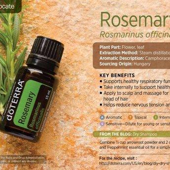 doTERRA Essential Oils Rozemarijn Essentiële Olie doTERRA - enkelvoudige olie