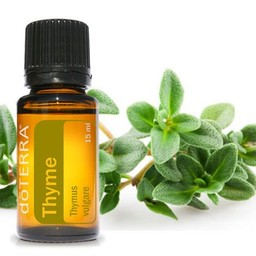 doTERRA Essential Oils Thyme Essential Oil