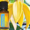 doTERRA Essential Oils Ylang Ylang essentiële olie
