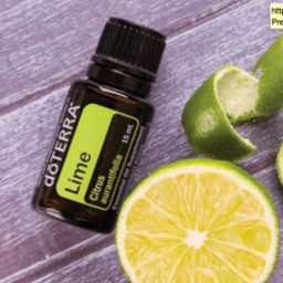 doTERRA Essential Oils Lime Essential Oil