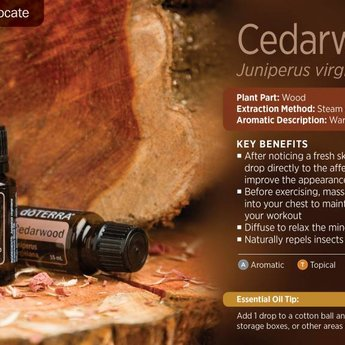 doTERRA Cedarwood essential oil 15 ml.