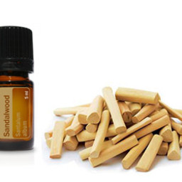 doTERRA Essential Oils Sandelhout 5 ml.
