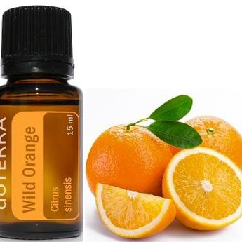 doTERRA Wild Orange Essential Oil - 5 ml.