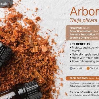 doTERRA Arborvitae essentiële olie 5 ml.