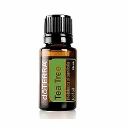 doTERRA Essential Oils Tea Tree essentiële olie