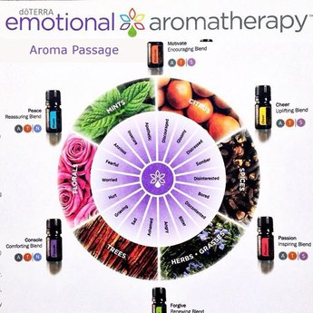 doTERRA Essential Oils Emotional Aromatherapy Kit