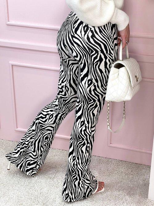 Zebra flare travel