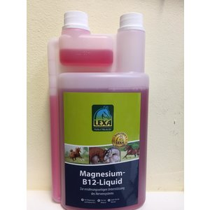 Magnesium B12 flüssig