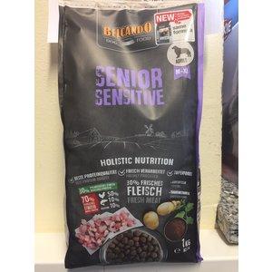 Senior Sensitiv
