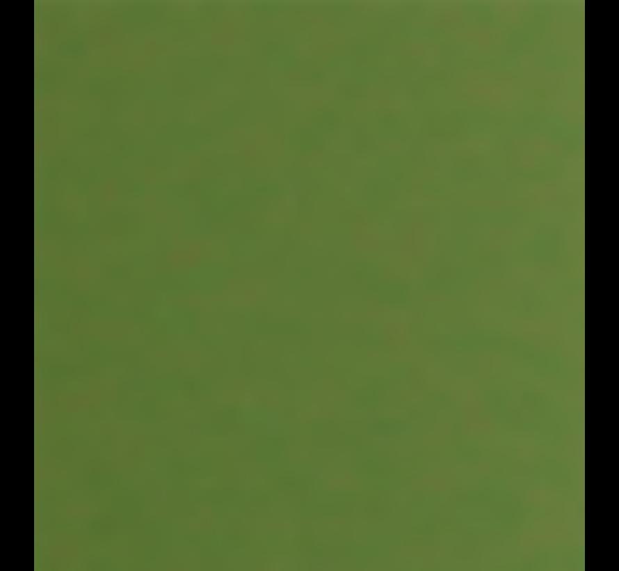 Armeefarbe Vietnam grün