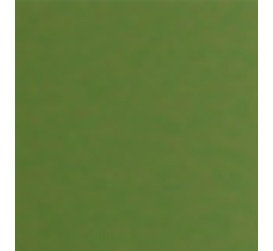 Army Paint Vietnam Green