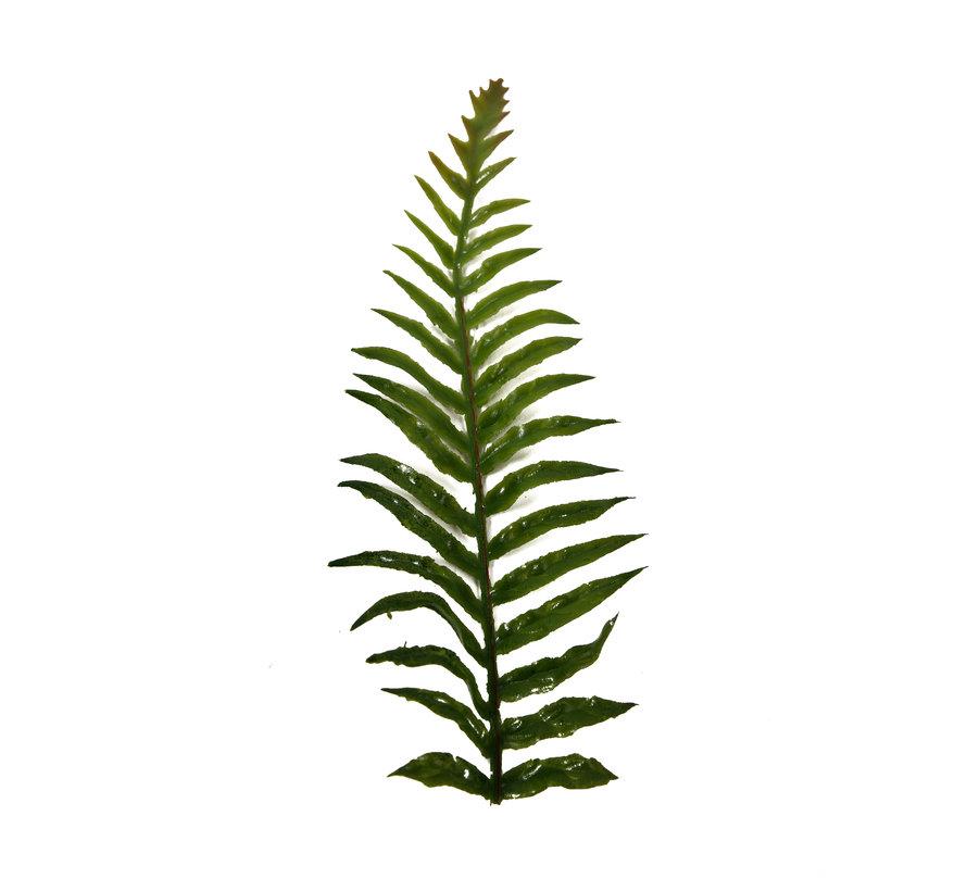 High Quality Artificial Ferns