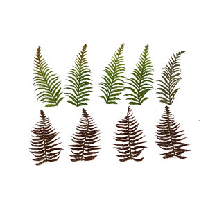 c4ssa_snipes High Quality Artificial Ferns