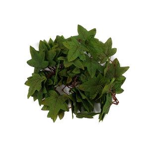 Aka Staten True Green Maple Leaves