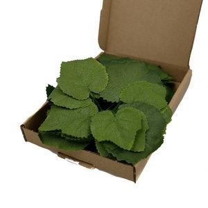 Aka Staten Crafting Blätter