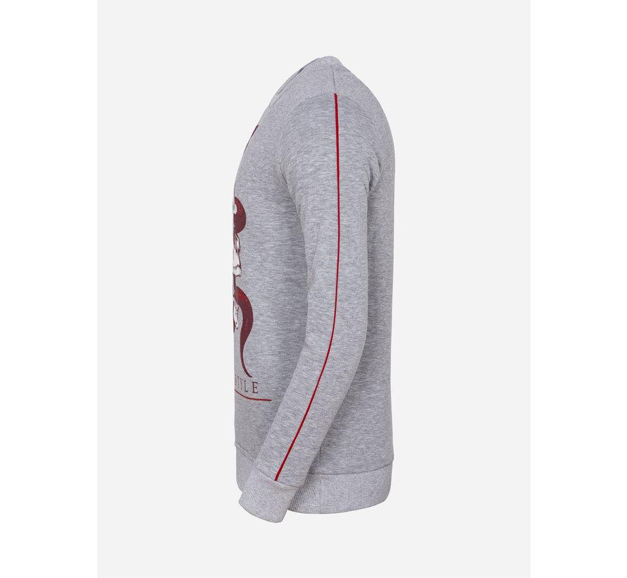 Sweater 66029 Concord Grey