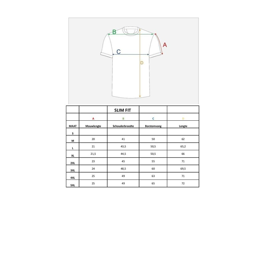 T-Shirt 66 Blauw