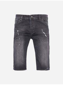 DENIM PARK Shorts 3195 Grey