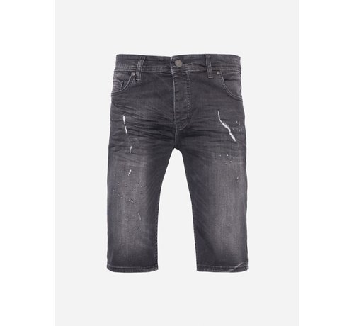 DENIM PARK Korte Broek 3195 Grey