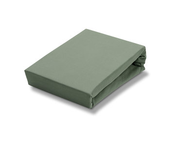 Vandyck Fitted sheet Olive-113 (jersey supreme)